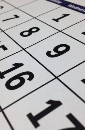 Scheduling - Predevelopment & Construction